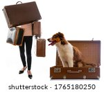 Young Girl With Many Suitcases...