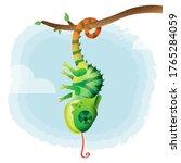 Cute Little Chameleon In The...