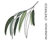 Willow Branch. Simple Vector...