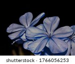 showing the bright blue and... | Shutterstock . vector #1766056253