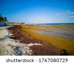 Playa Del Carmen Beaches Full...