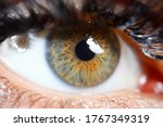 Close-up of beautiful womans eye looking away. Detailed picture of green and brown colour of female lens. Adult and poofy black eyelashes. Beauty and modeling concept
