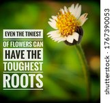Small photo of Even the tiniest of flowers can have the toughest roots. Text message on a blurry nature background and white flower. Inspirational motivational quote for life.