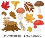 Set Of Mushrooms Brown White...