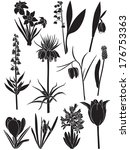 set silhouette image of spring... | Shutterstock .eps vector #176753363