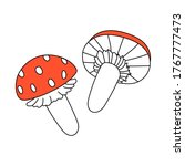 Two Red Amanita Mushrooms With...