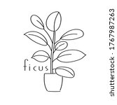 vector illustration plant ficus ... | Shutterstock .eps vector #1767987263