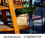 Terrace Decoration With Wooden...