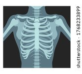 thorax x ray. lungs...   Shutterstock .eps vector #1768233899