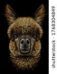 alpaca   llama portrait.... | Shutterstock .eps vector #1768304849