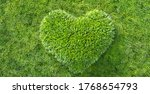 green grass in heart shape... | Shutterstock . vector #1768654793