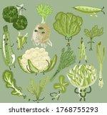 cute vegetables illustrations.... | Shutterstock .eps vector #1768755293