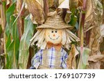 Scarecrow In The Cornfield In...