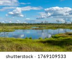 Sunny Summer Landscape From Th...