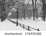 Snowstorm In Central Park ...