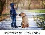 Little Boy With His Dog In The...