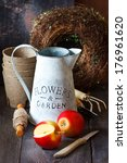 Nature theme with red apples and rustic gardening tools on an old wooden background.  - stock photo