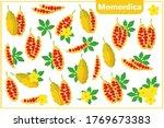 set of vector cartoon... | Shutterstock .eps vector #1769673383