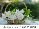 Beautiful Gardenia Bouquet In...
