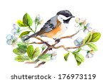 Spring Bird On Blooming Branch...