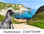 Sunny Day In Dorset  Uk