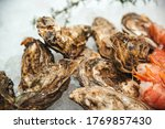 Fresh Oysters At Showcase....