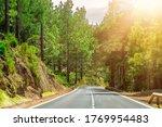 winding road in a mountain... | Shutterstock . vector #1769954483