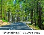 winding road in a mountain... | Shutterstock . vector #1769954489