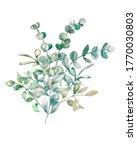 watercolor illustration. green...   Shutterstock . vector #1770030803