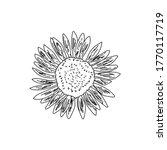 outline decorative garden... | Shutterstock .eps vector #1770117719