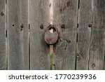 An Old Iron Lock On A Wooden...