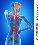 medical 3d illustration  ... | Shutterstock . vector #177026120