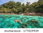 snorkel diving at koh lipe of... | Shutterstock . vector #177029939