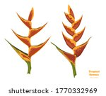 isolated tropical flowers....   Shutterstock .eps vector #1770332969