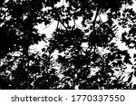 tree leaves. forest nature... | Shutterstock .eps vector #1770337550