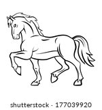 horse  | Shutterstock . vector #177039920