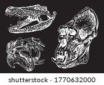 Graphical Set Of Skulls...