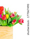 tulips in the box | Shutterstock . vector #177067490