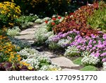 Garden In Bloom  Landscape...