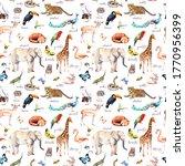 A Lot Of Wild Animals  Birds ...