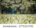 A corn field with a hunter's high seat in the background, ideally placed to spot game and/or birds. This wooden cabin is also used as a viewpoint. - stock photo