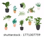 set of plants growing in pots.... | Shutterstock .eps vector #1771307759