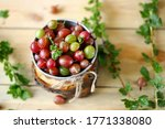 Small photo of Selective focus. Macro. Gooseberries in a bowl on a wooden surface. Gooseberry leaves and branches. Harvest gooseberries. Rustic style.