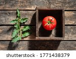 Raw Red Tomato In A Wooden Box...
