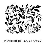 plant branches with small... | Shutterstock .eps vector #1771477916