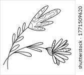 vector hand drawn doodle... | Shutterstock .eps vector #1771509620