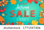 Autumn Sale Banner In Fall...