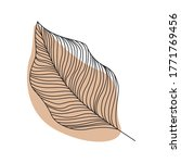 abstract leave line art flat...   Shutterstock .eps vector #1771769456
