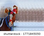 Funny Red Horse In A Santa...