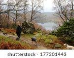 On Low Birk Fell  Walking...